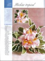 flores-02-pag-21