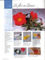 flores-02-pag-24