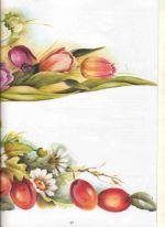 27-tulipan