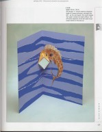 The Pop-Up Book0027